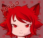 Ringo the fox by Sand-Gale