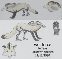 wolfforce Reference Sheet by wolfforce58