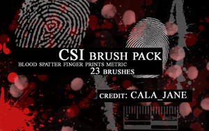 """CSI"" brush set by calajane"