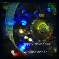 Bonne annee Happy New Year by hyneige