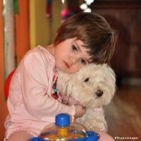 The_Little_Girl_and_her_Dog II by hyneige