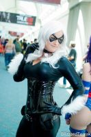 Black Cat - SDCC Candid by hydraness