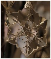 Snowflake by Claudia008