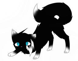 New warrior cats OC by Casper3703