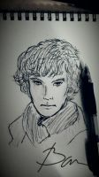 Sherlock by Barbara321