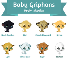 Adoptable griphons by Kanbhik