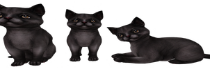 black cats png by dementiaRunner
