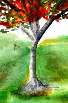 Solo Tree Trunk by muridaee