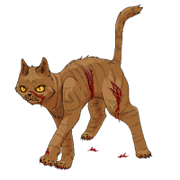 Mudfur of RiverClan (ScourgeRules collab) by TigerMoonCat