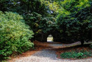 Parco di Monza August by g25driver