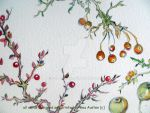 berberis, miniature apples and rose hips .. sectio by GeaAusten