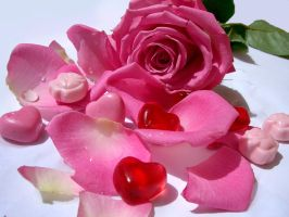 Sweet Rose by ch0caho1ic