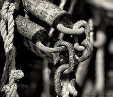 Linked and roped by imonline