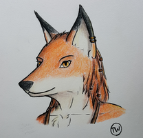Female Fox by TitusW