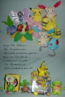All my new pokemon toys by princessangel83