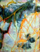 # 7 Golden Orb Web 17.5x23.5 by moredragons