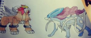 Entei and Suicune Drawing by Krayzieee