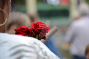 In memory of you by noraphoto