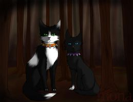 Scourge and Bone. Gift for RainbowKitty13 by Kokolana