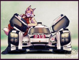 luggz McMillan and the Porsche 919 Hybrid by barish-ki-boond