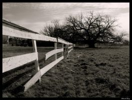 Fence of Eden by eddy4fizzle