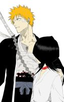 ichigo and rukia by ToddMcg