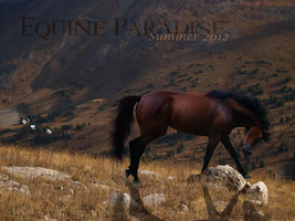 Equine Paradise Banner by YourArchAngel