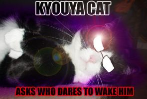 Kyouya Cat DOES NOT WANT by theoneandonlymich