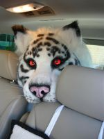 tiger in the car by LilleahWest