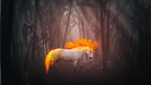 The Fire Horse by Binary-Map