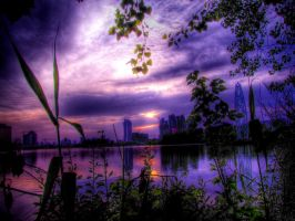 Purple Haze by ZuoYiLong