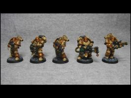Sternguard with Flamers and Heavy Flamers by TheWayOfTempest