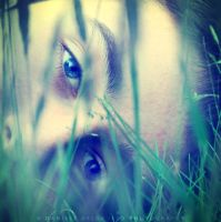 Conceal by dandelgrosso