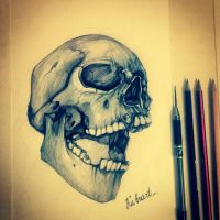 Skull Drawing by Kubrart