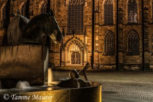 Nightly Fontain by tammemaurer