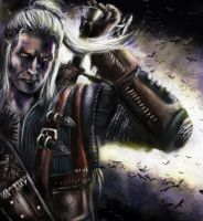 Geralt by honornova
