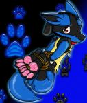 Lucario Hogtie  remake  AGAIN by Fluffy-Mage