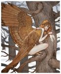 Harpy by bluefooted