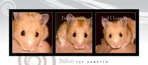 Bifoo the Hamster by AnubisGraph