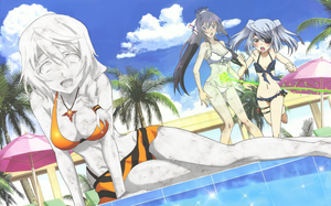Infinite Stratos Poolside Petrification by adi1625