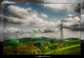 Electric Nature #03 by artofphotograhy