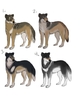 Wolf adoptables - selling - by PointAdoptsforyou