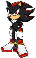 Shadow the Hedgehog by knuxiechan