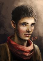 Merlin by AlaisL