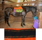 Saddle Pad by sioranth