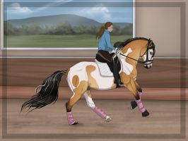 .:Training for AUSe-Olympics - 1:. by BRls-love-is-MY-Live