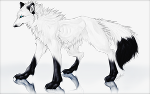 White .:Far Away.Ice Edition:. by WhiteSpiritWolf