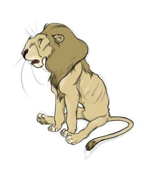 some sketch of a lion by thalia-is-crazy