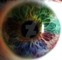 colors of the eye by crazygst