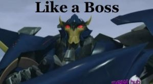 Like a boss by MLAAT